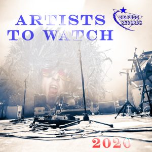 Artists To Watch, 2020, New Music Release, Big Fuss Records